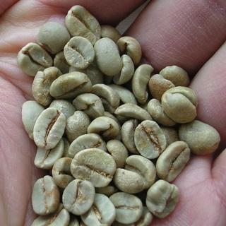 コーヒー豆(生).jpg